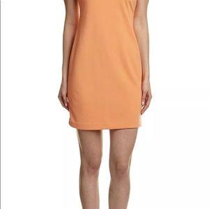 Ellen Tracy women mango color short sleeve